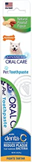 product image for Nylabone Advanced Oral Care Natural Toothpaste Peanut Flavor 2.5 oz.