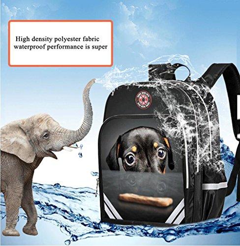 Schule Taschen für Jungen und Mädchen 20 l 35 l Cartoon Animal Unisex Rucksack Taschen Rucksack ideal wasserdichter 3D Druck (36x30x15cm (A-3)) 40x30x15cm (A-3)