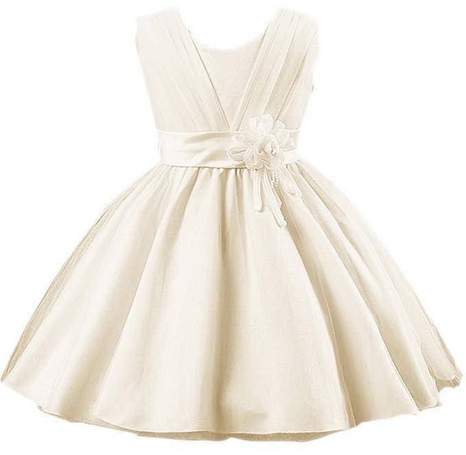 Z-linda Tutu Dress Vestidos Para Niñas Malla V Cuello de Fiesta/Cóctel/Boda: Amazon.es: Ropa y accesorios