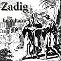 Zadig Audiobook by  Voltaire Narrated by Walter Covell
