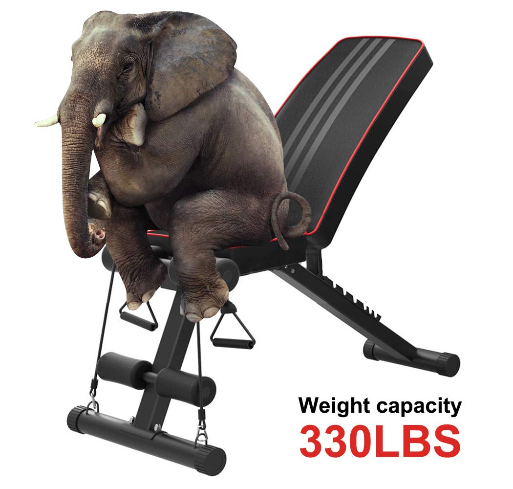Yoleo Adjustable Weight Bench - Utility Weight Benches for Full Body Workout, Foldable Incline/Decline Bench Press for Home Gym by Yoleo (Image #7)
