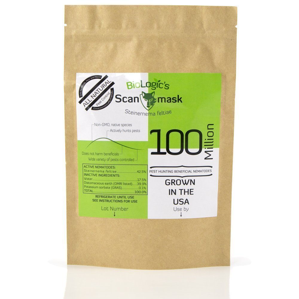BioLogic Scanmask Steinernema Feltiae (Sf) Beneficial Nematodes for Natural Insect Pest Control, 100 Million Size by BioLogic