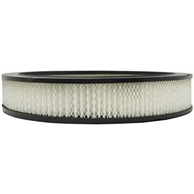 Luber-finer AF812 Heavy Duty Air Filter: Automotive