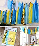 Premium Tissue Paper Tassels, Party Tassels DIY Garland Banner for Wedding, Baby Shower, Birthdays, Photo Props, Event and Party Supplies DIY Kits (Blue+ Yellow)