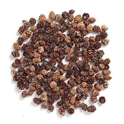 Pine Cones,Byher Mini Pinecones in Bulk for Crafts, 8OZ, Pack of 110 (Natural) -