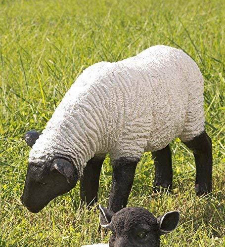 (Grazing Suffolk Sheep Resin Garden Statue)