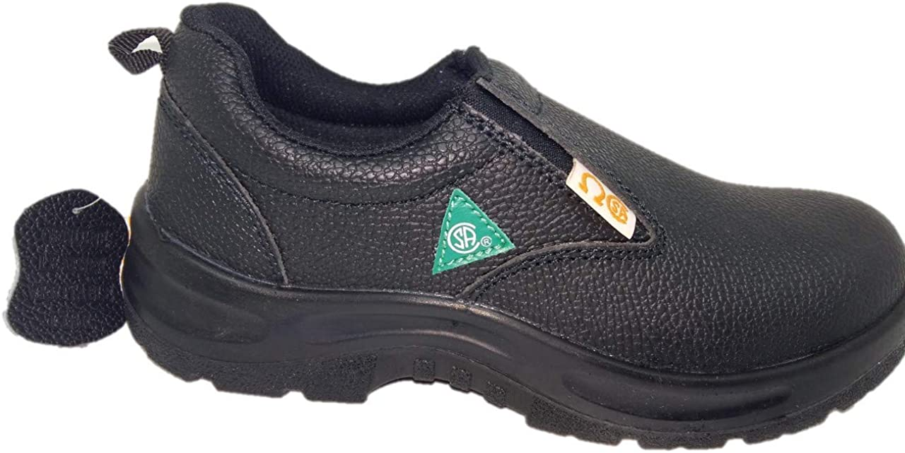 Dolphin D3 CSA Approved Safety Shoes