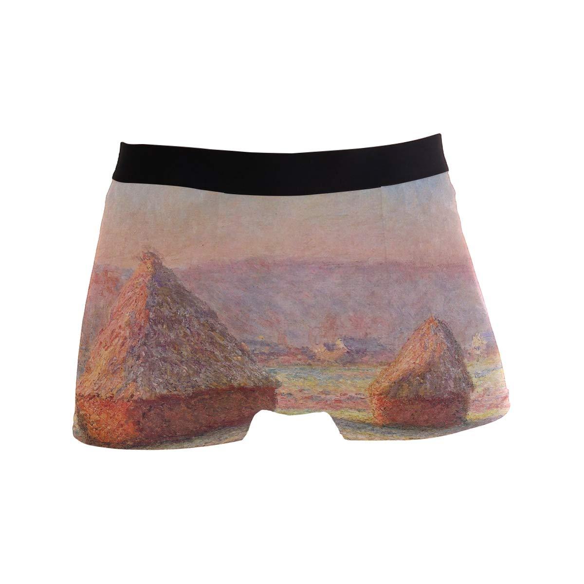 Claude Monet Art Mens Underwear Boxer Breathable Underpants Briefs S-XL