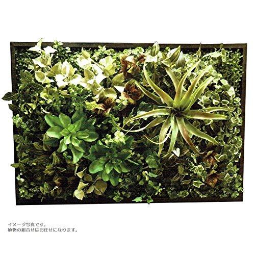 人工観葉植物 アーティフィシャルグリーンアレンジ壁面植裁 幅78cm rg-017 B074FXGGTR