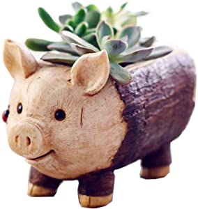 Youfui Cute Pig Flowerpot Animal Resin Succulent Planter Desk Mini Ornament (Piglet)