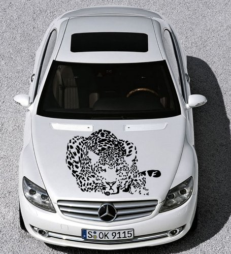 [Auto Car Vinyl Decal Animal Cat Cheetah Leopard for Hood Decor Removable Stylish Sticker Unique Design Any Vehicle] (Vinyl Cat Hood)
