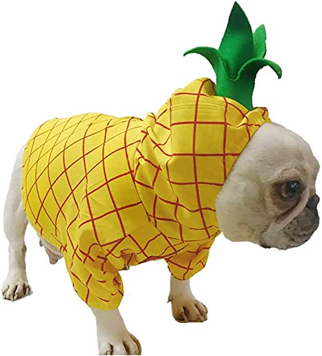 Coppthinktu Disfraz de piña para Mascotas, Halloween, Perros ...