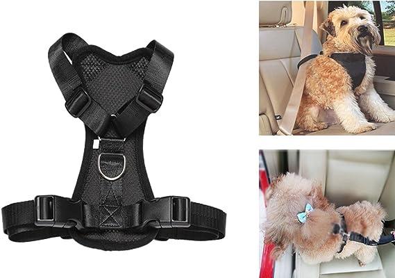 Arnés de seguridad para llevar mascotas en el coche, acolchado y ...