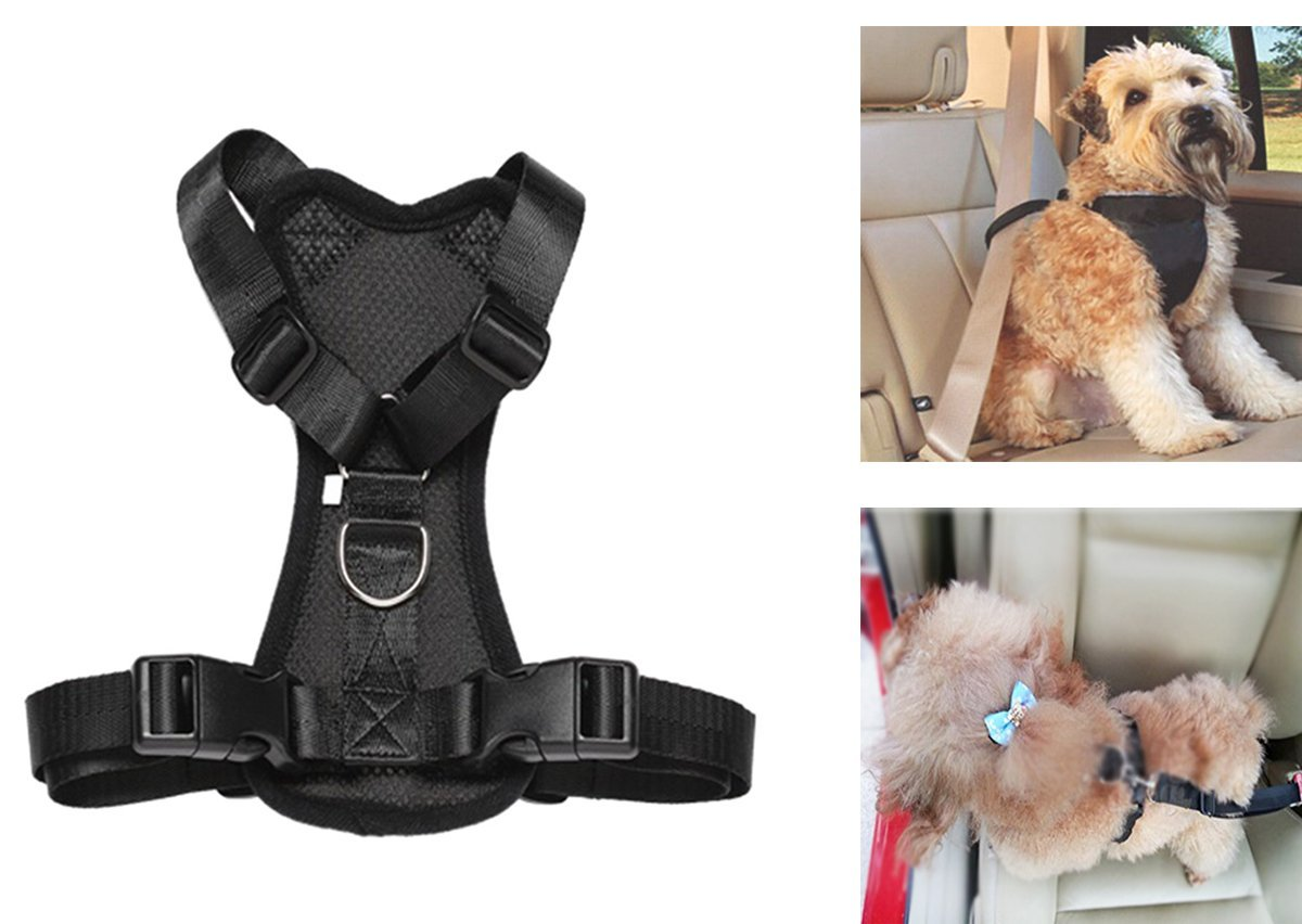 Arné s de seguridad para llevar mascotas en el coche, acolchado y ajustable, con anclaje al cinturó n de seguridad, ideal para perros y gatos pequeñ os, medianos y grandes. BXT-PET