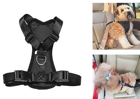 Arnés de seguridad para llevar mascotas en el coche, acolchado y ajustable,