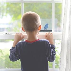Yardly Noticed Window Bird Feeder With Tray