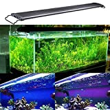 AE-SHOP Aquarium Hood Lighting Fish Tank Light lamp for Freshwater Saltwater, Blue