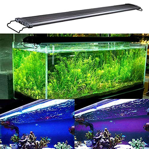 ighting Fish Tank Light 48-60 inch lamp for Freshwater Saltwater Marine Blue and White Decorations Light 120cm ()