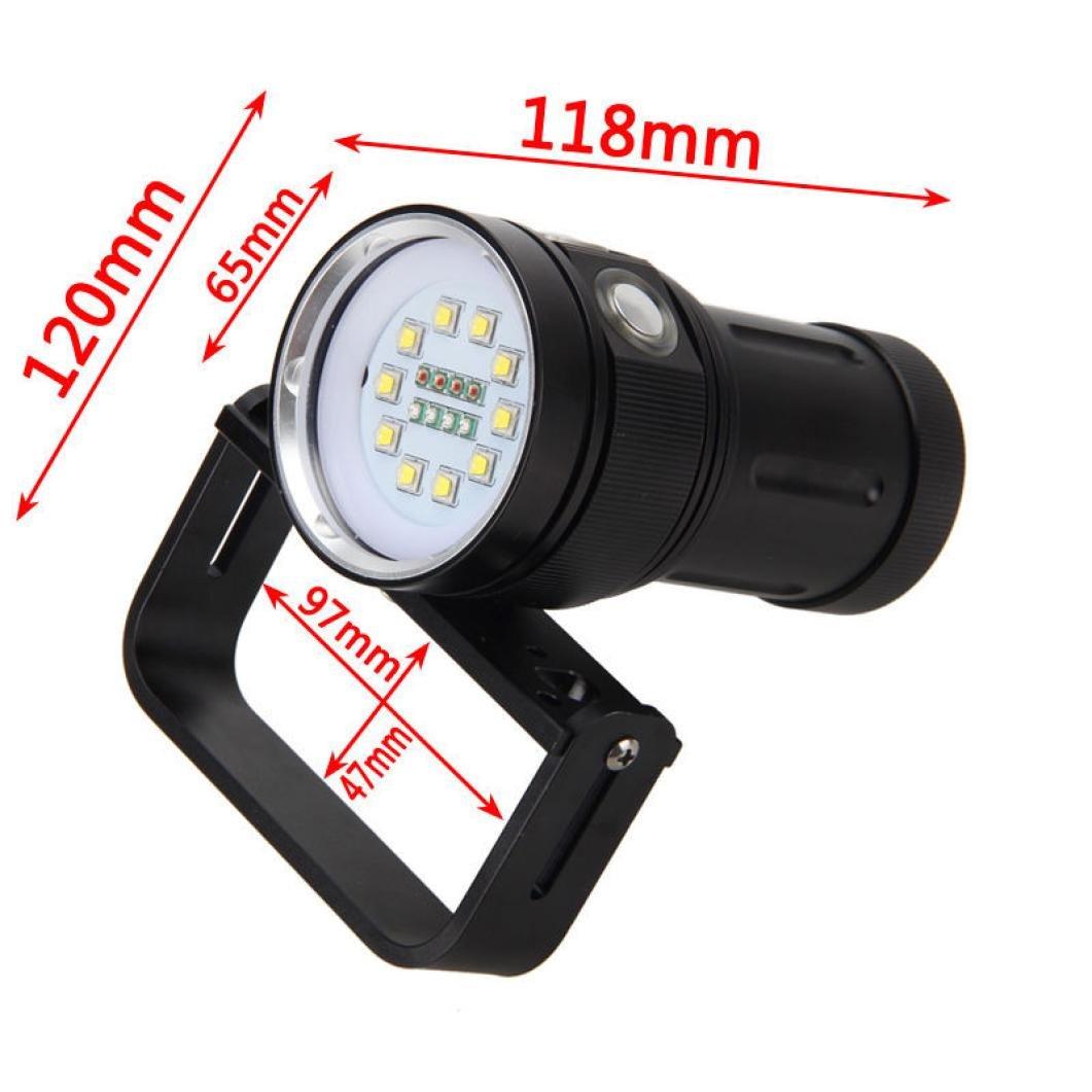Dreamyth Affordable 12000LM 10x XM-L2 LED Underwater 100m Scuba Diving Flashlight Torch+18650+Charge (Black)