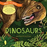 Download Shine-a-Light: Dinosaurs: A Shine-a-Light Book in PDF ePUB Free Online