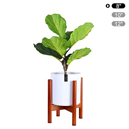Fopamtri Plant Stand Mid Century Wood Plant Holder for Outdoor Indoor on house plants with colorful leaves, indoor plant identification by flower, house plants and their names, house plant propagation, shrubs that flower, house plant white flower, house plant with curly leaves, house identify plant by leaf, house plant pink flower, house with flowers, house plant with heart shaped leaves, indoor plant with white flower, house plants with red veins, palms that flower, house plant identification succulent plant, house plant with green leaves and white, indoor flowering plants flower, grass that flower, house plants with large leaves, house plants for fall,