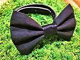 Black Solid Pet Bow Tie