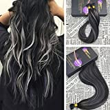 Moresoo 20 Inch 50g Balayage Color Off Black/#1B With Grey Silver 100% Remy Human Hair Extensions Straight Pre Bonded I Tip Fusion Hair Extensions 1g/s