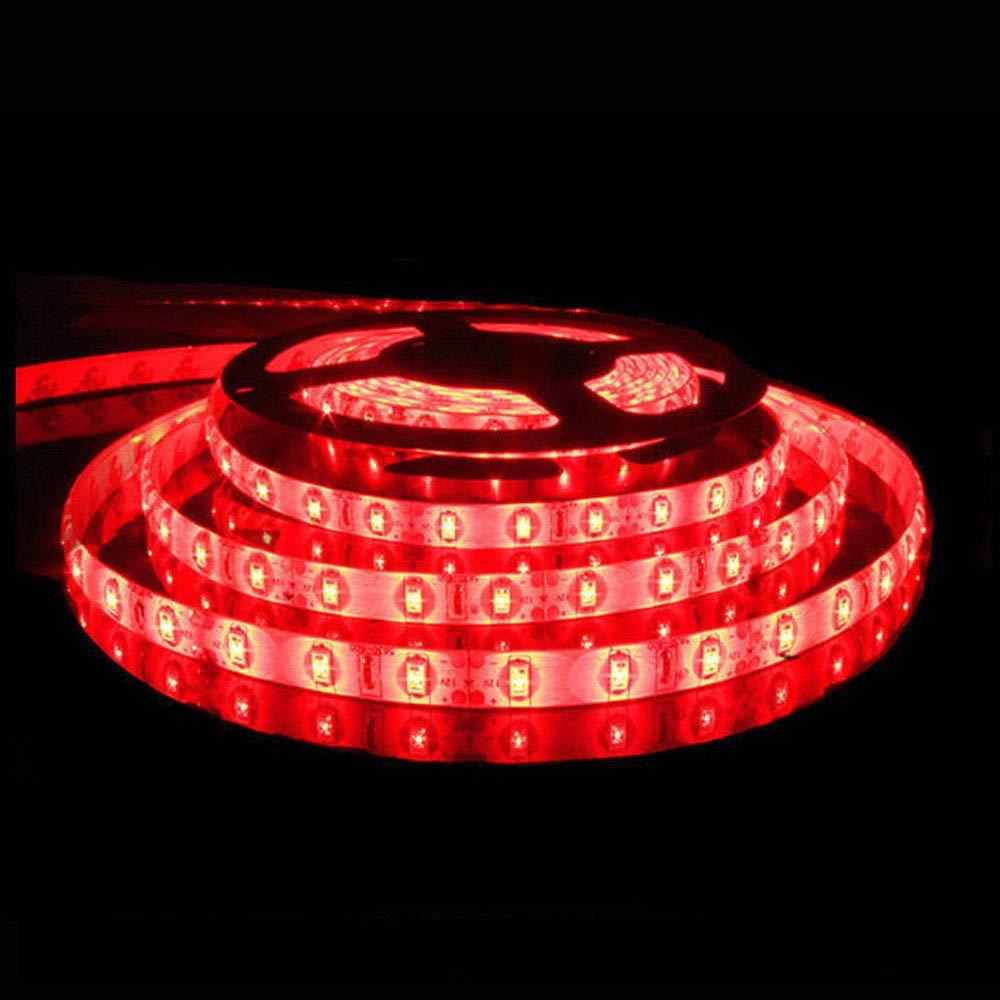Rot Energieklasse A+ und au/ßenbereich CRI80 led band LanXi Led streifen 5M,12V led strip SMD5630 300leds ultra helligkei led stripes IP65 wasserdicht geeignet f/ür den innen