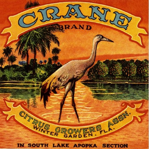 Winter Garden Florida Crane Brand Bird Orange Citrus Fruit Crate Box Label Art Print