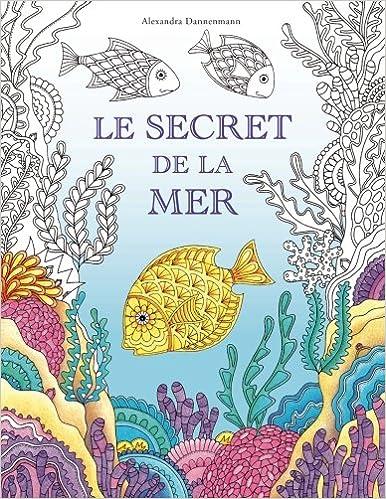 Coloriage Bateau Coule.Amazon Fr Le Secret De La Mer Cherche Les Tresors Du Bateau Qui A
