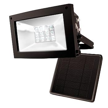 Maxsa Innovation 80 Lumens Solar Dusk to Dawn Light