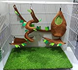 Brown Sugar Pet Store 5 piece Sugar Glider Cage Set Oval Forest Pattern Light Brown Color