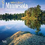 Minnesota, Wild & Scenic 2018 7 x 7 Inch Monthly Mini Wall Calendar, USA United States of America Midwest State Nature (English, French and Spanish Edition)