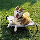 Amazon.com : Gale Pacific The Original Elevated Pet Bed By