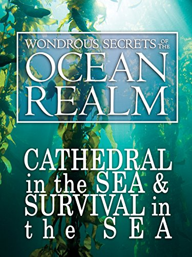 wondrous-secrets-of-the-ocean-realm-cathedral-in-the-sea-survival-in-the-sea