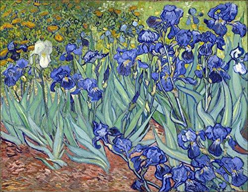 Art Sticker Bumper - Van Gogh IRISES Sticker (fine art artist painting bumper)