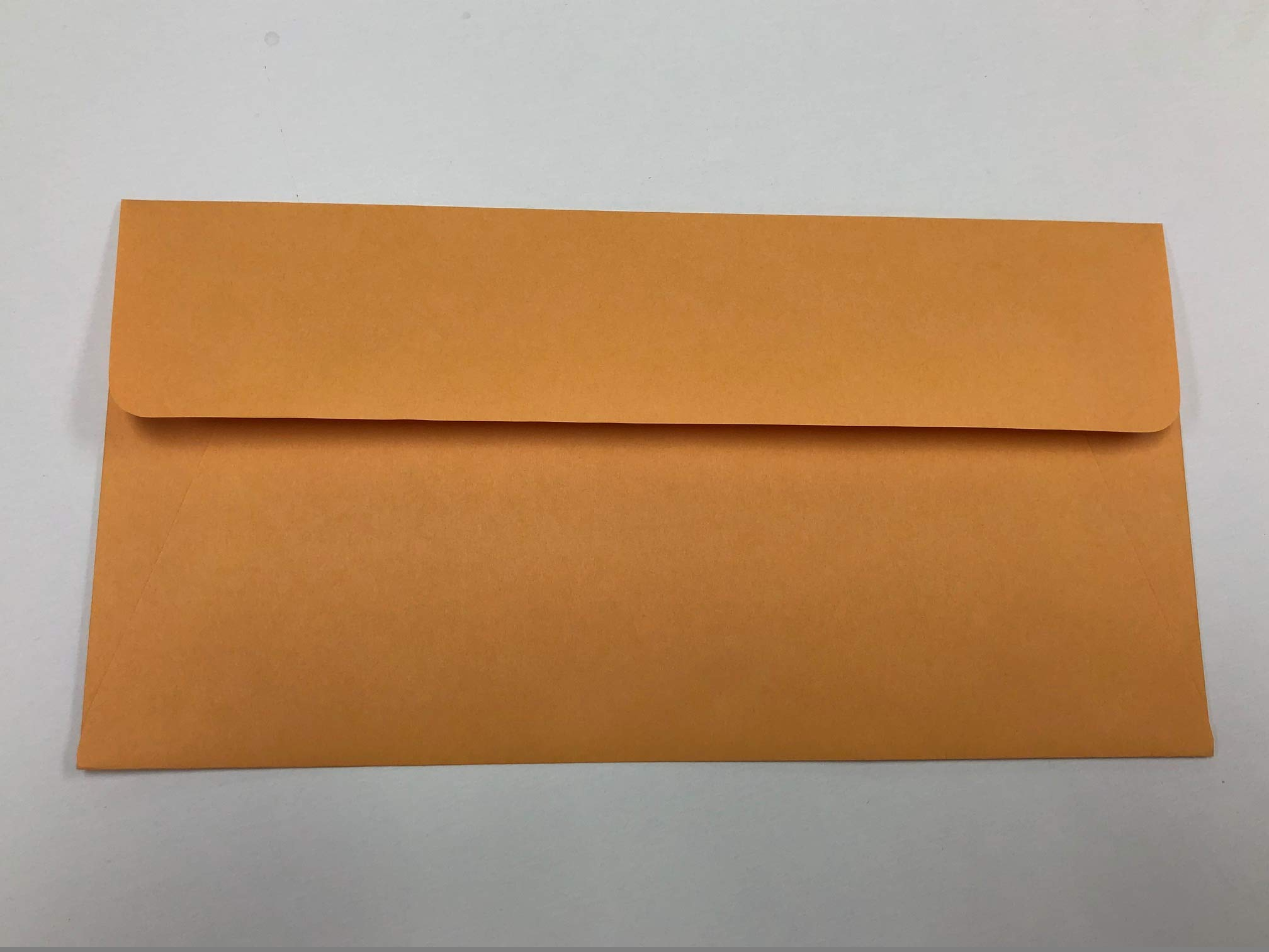 License Plate Envelopes, (Moist & Seal) - Pack of 50 by Burrell Printing