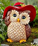 HOME STAR INNOVATIONS Dress-Up Garden Animals (Owl) Review
