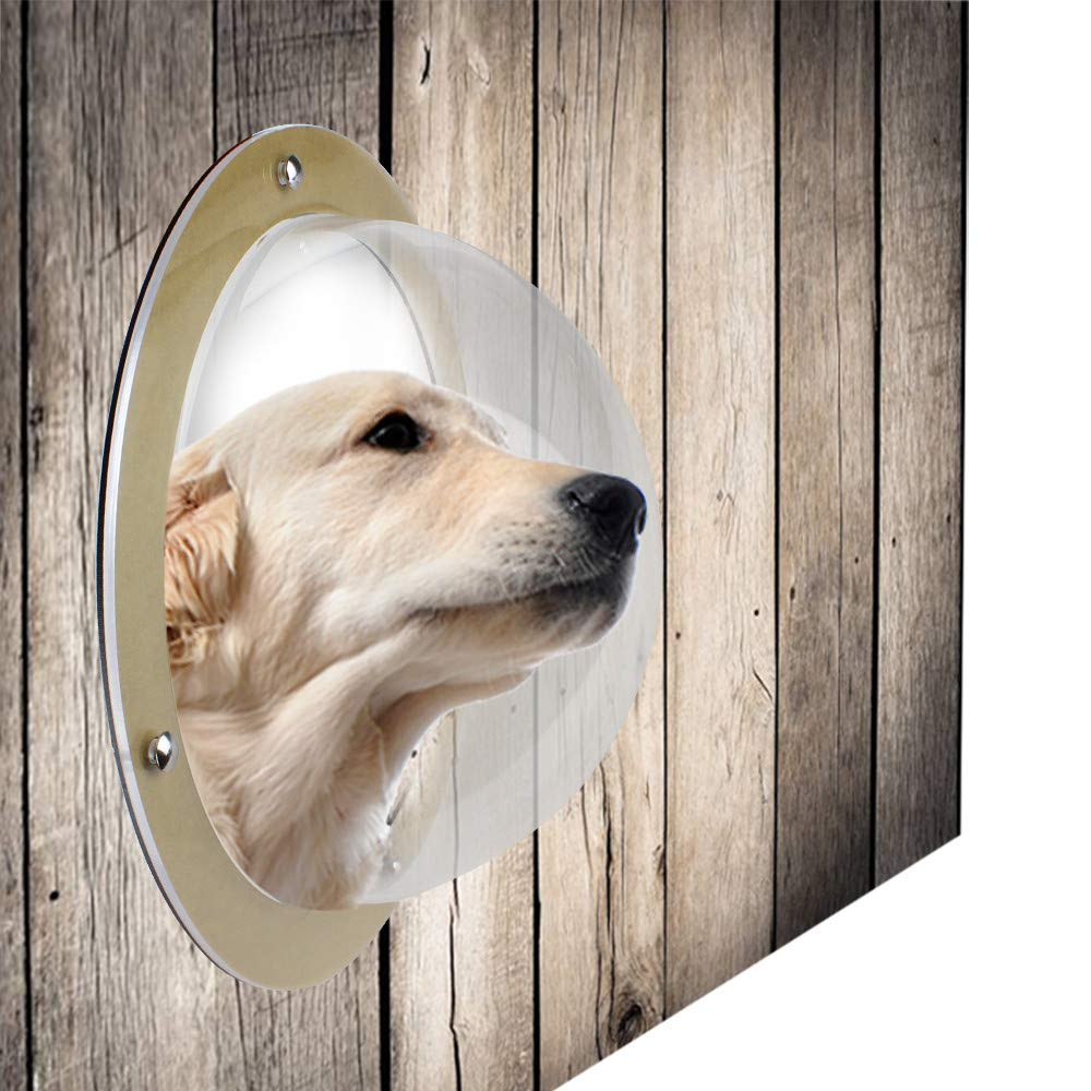 Pet Dog Fence Window Cats Dogs Peek Bubble Durable Acrylic Dome Window