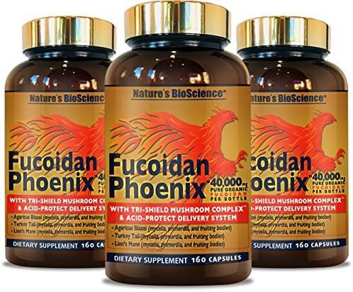 Fucoidan Phoenix by Nature s BioScience 3 Pack