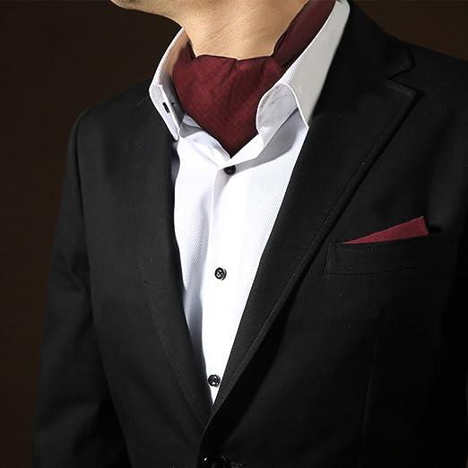 HAIPENG Masculino Seda Corbata Bufanda Hombres Traje Camisa ...
