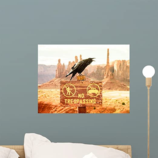Wallmonkeys Monument Valley Utah Usa Wall Mural Peel And Stick Graphic 18 In W X 14 In H Wm360017 Home Kitchen