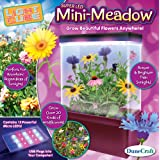 DuneCraft LC-0544 Mini-Meadow Science Kit