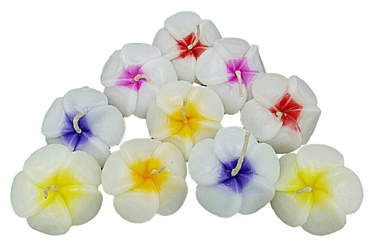 NAVA CHIANGMAI Plumeria Flower Floating Candles 10 pieces / 1 Set