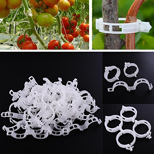 LKXHarleya 200pcs Garden Plant Vegetables Vine Support Clips Tomato Trellis  Clips To Healthier Grow Upright By