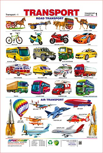 Spectrum Pre - School Kids Classroom Laminated Transport Name Wall Hanging Chart