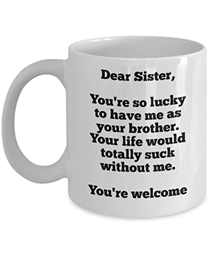 Amazon Gift For Sister From Brother Funny Mugs
