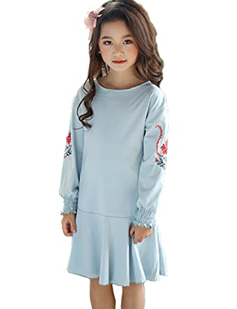 ac56b8880ec73 Maison Jardin Princesse Robe Enfant Fille Partie Soirée Style Simple Brodée  Bleu Manches Longues Robe 3-12 Ans  Amazon.fr  Vêtements et accessoires