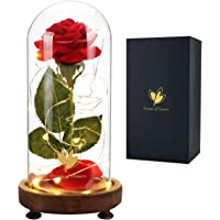 Beauty and The Beast Rose, USB Switch, Magic Rose, Red Silk Rose Flower & Glass Dome LED Decorative Light, Home…