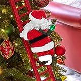 Brylanehome Animated Musical Climbing Santa (Multi,0)